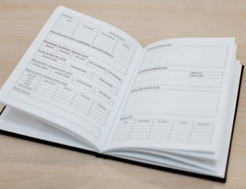 Ce conține jurnalul investitorului?