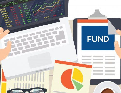 În ce investesc fondurile de acțiuni