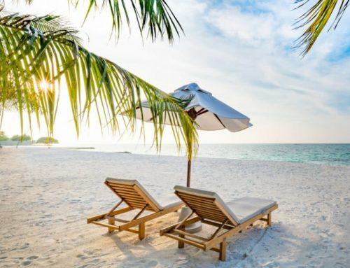 Cum îți pregătești portofoliul de investitii pentru vacanță