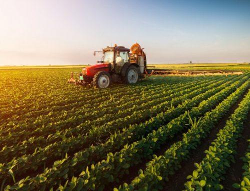 Companiile din sectorul Agricol – Partea 1