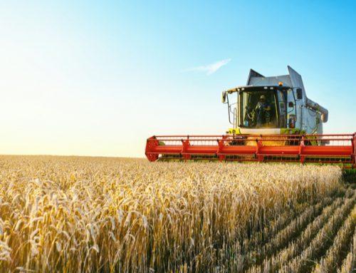 Companiile din sectorul agricol – Partea 2